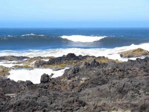 Oregon Coast 4 sm