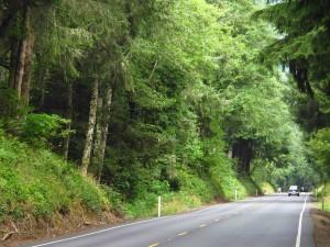 Oregon PCH Car sm