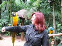 thumbs_lois-parrot