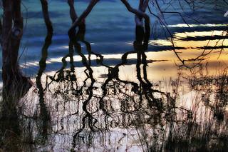 active stillness