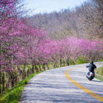 spring motorcycle hazards